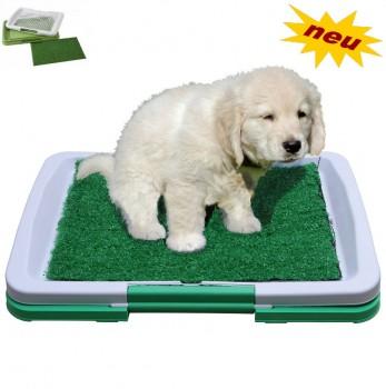 Hunde Welpentoilette Welpen Hunde Toilette WC Hundewc Hundetoilette Hundeklo Kunst Gras Grasmatte Wohnung & Balkon