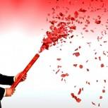 Rosen Regen 60 cm mit roten Rosenblättern Konfetti Kanone Shooter Hochzeit Konfettibome Partypoppe